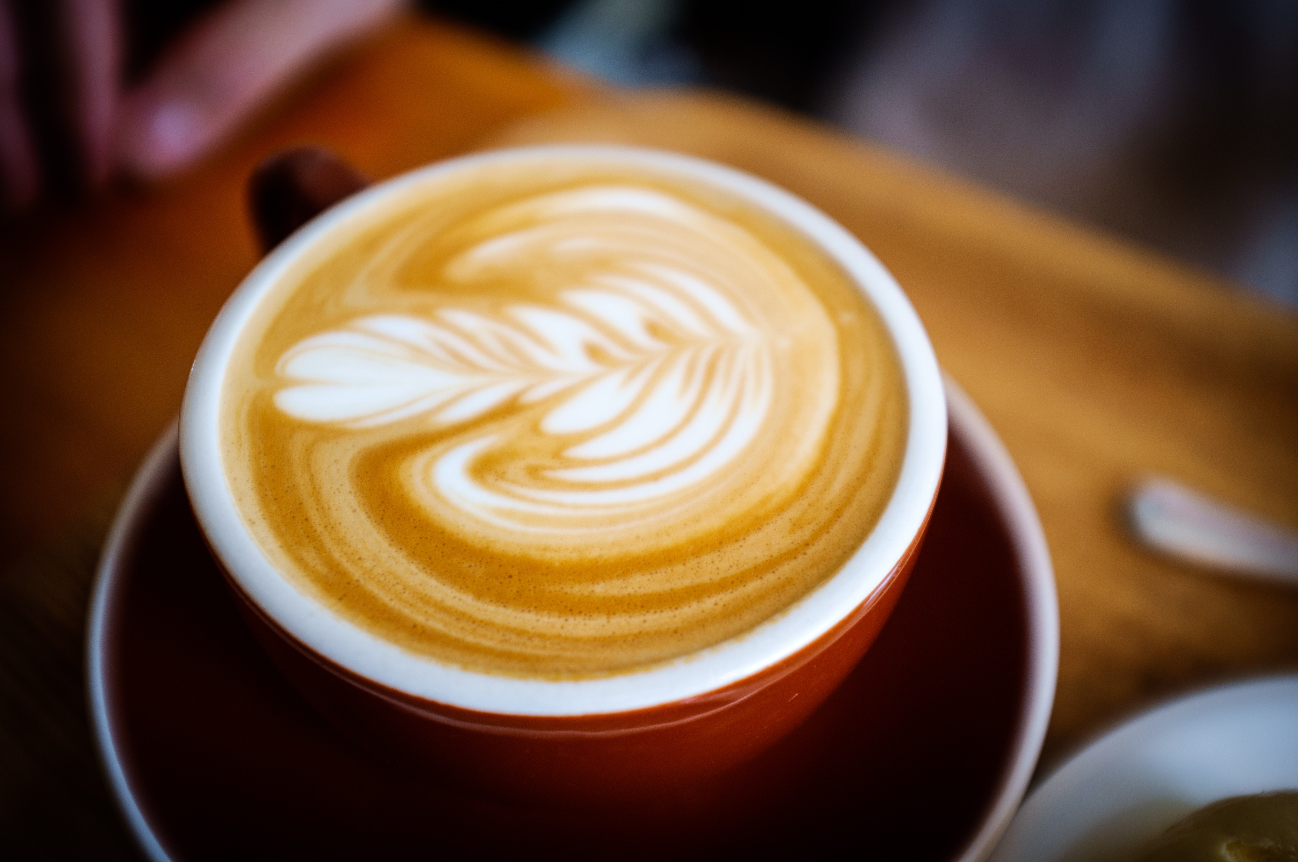 a cappuccino with a milk flower like pattern, beauty and taste for breakfast
